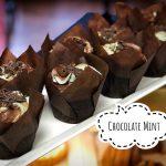 image of Chocolate Min cupcakes
